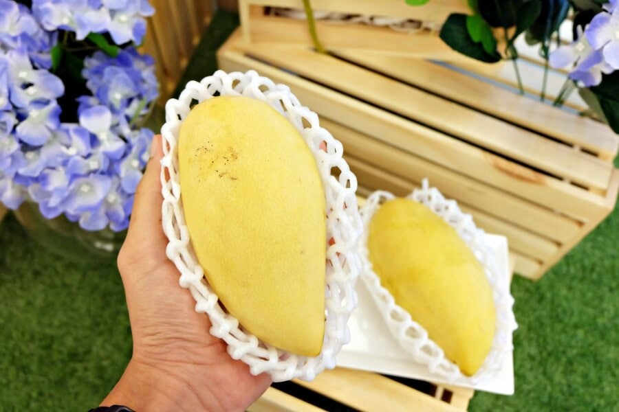 review-s-and-p-mango-sticky-rice-festival-35