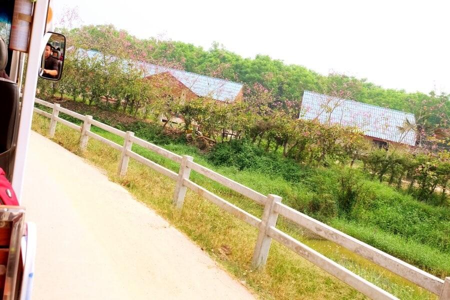 singhapark-chiangrai-social-enterprise-121